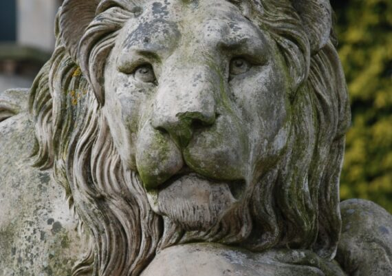 Harlaxton Front Circle, Coade stone lion before conservation